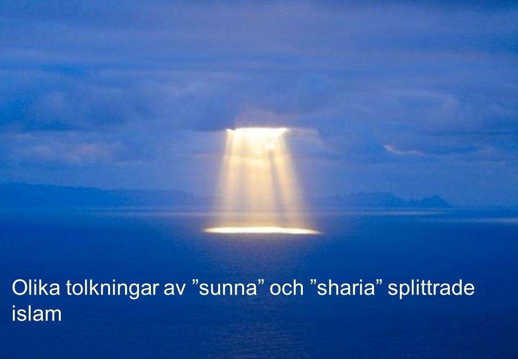"""Olika tolkningar av """"sunna"""" och """"sharia"""" splittrade islam"""