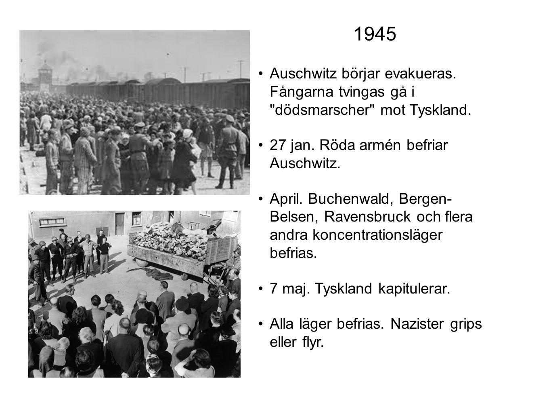 Auschwitz börjar evakueras. Fångarna tvingas gå i
