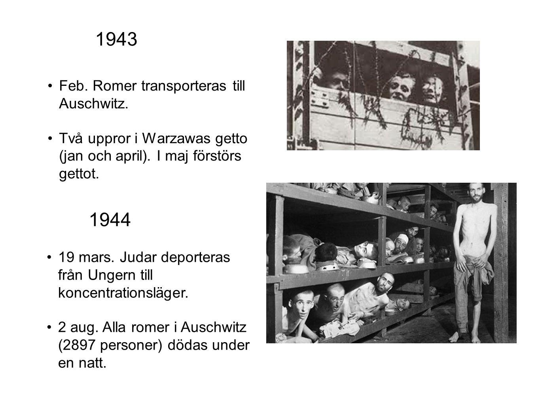 Feb. Romer transporteras till Auschwitz. Två uppror i Warzawas getto (jan och april). I maj förstörs gettot. 19 mars. Judar deporteras från Ungern til