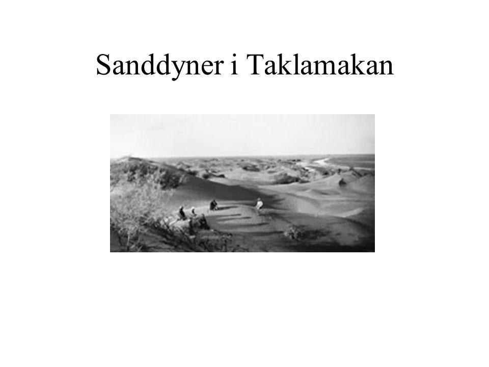 Sanddyner i Taklamakan