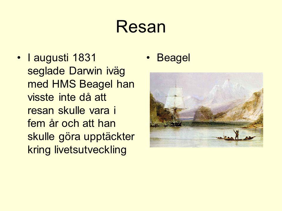 Resan I augusti 1831 seglade Darwin iväg med HMS Beagel han visste inte då att resan skulle vara i fem år och att han skulle göra upptäckter kring liv