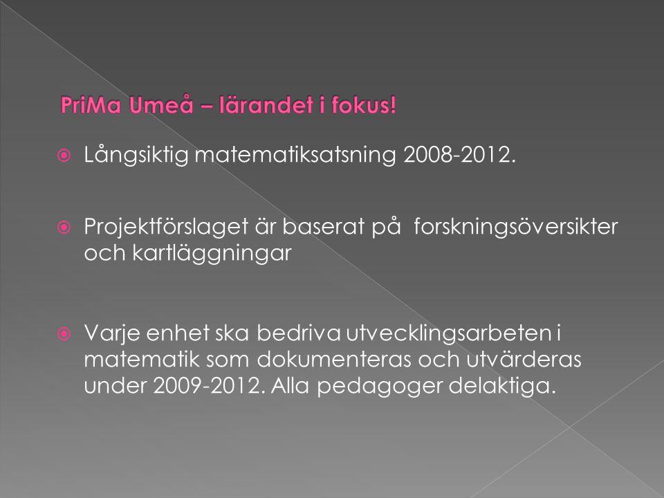  Långsiktig matematiksatsning 2008-2012.  Projektförslaget är baserat på forskningsöversikter och kartläggningar  Varje enhet ska bedriva utvecklin