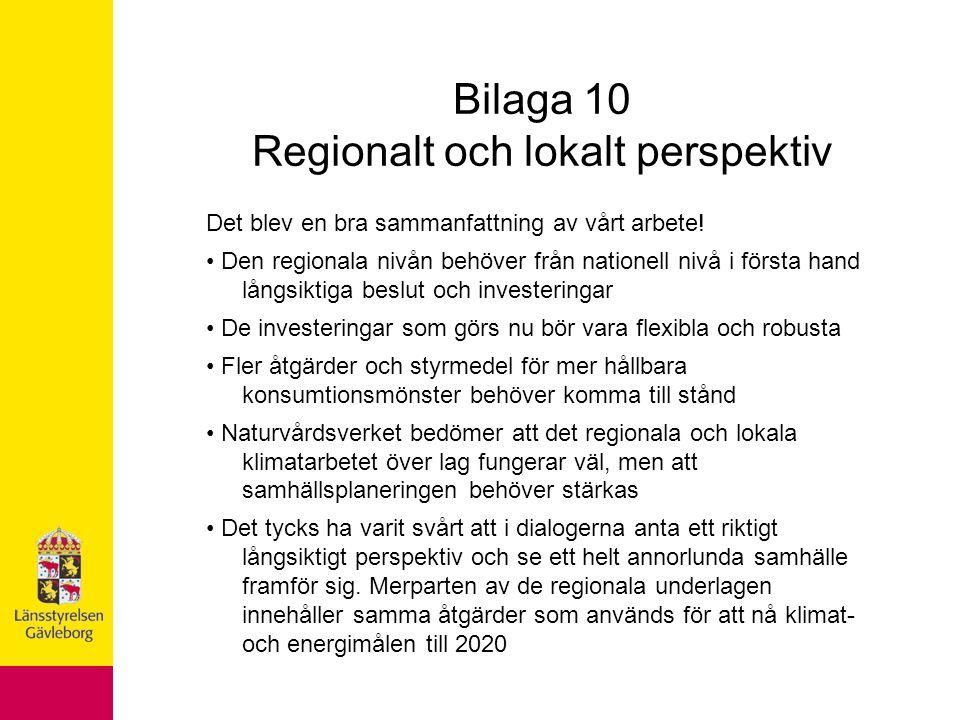 Bilaga 10 Regionalt och lokalt perspektiv Det blev en bra sammanfattning av vårt arbete.