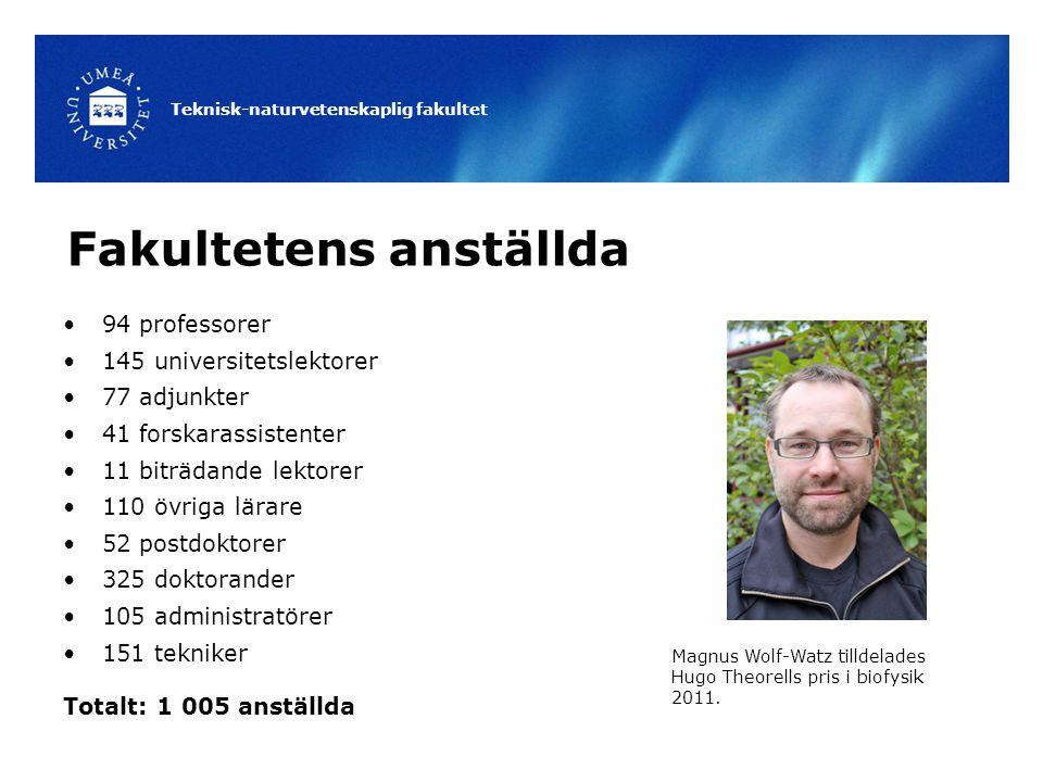 Teknisk-naturvetenskaplig fakultet Fakultetens anställda 94 professorer 145 universitetslektorer 77 adjunkter 41 forskarassistenter 11 biträdande lekt
