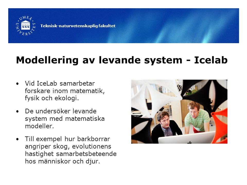 Teknisk-naturvetenskaplig fakultet Modellering av levande system - Icelab Vid IceLab samarbetar forskare inom matematik, fysik och ekologi. De undersö