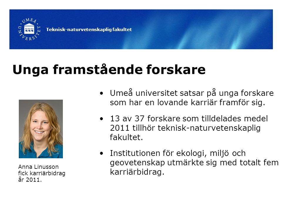 Teknisk-naturvetenskaplig fakultet Unga framstående forskare Umeå universitet satsar på unga forskare som har en lovande karriär framför sig. 13 av 37