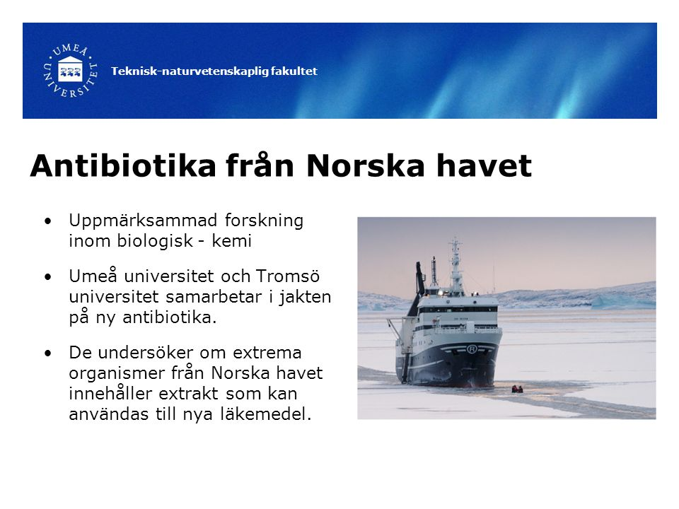 Teknisk-naturvetenskaplig fakultet Antibiotika från Norska havet Uppmärksammad forskning inom biologisk - kemi Umeå universitet och Tromsö universitet samarbetar i jakten på ny antibiotika.