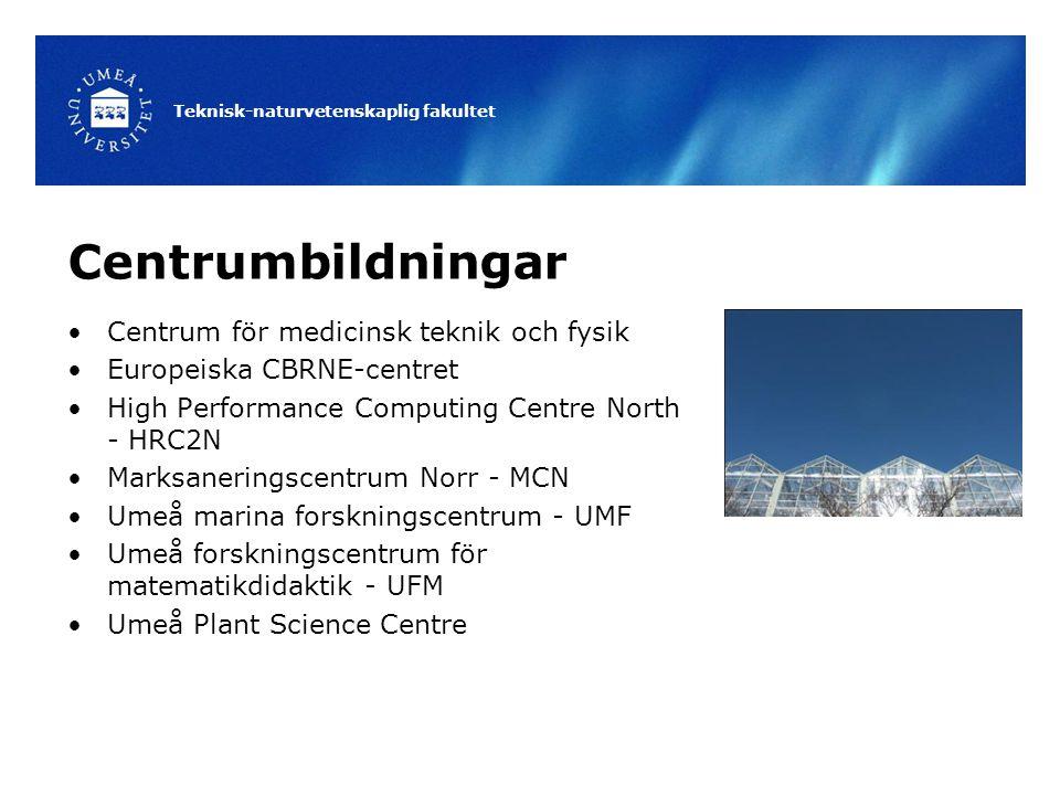 Teknisk-naturvetenskaplig fakultet Centrumbildningar Centrum för medicinsk teknik och fysik Europeiska CBRNE-centret High Performance Computing Centre North - HRC2N Marksaneringscentrum Norr - MCN Umeå marina forskningscentrum - UMF Umeå forskningscentrum för matematikdidaktik - UFM Umeå Plant Science Centre