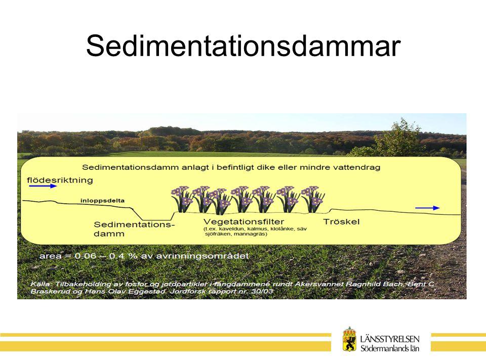 Sedimentationsdammar