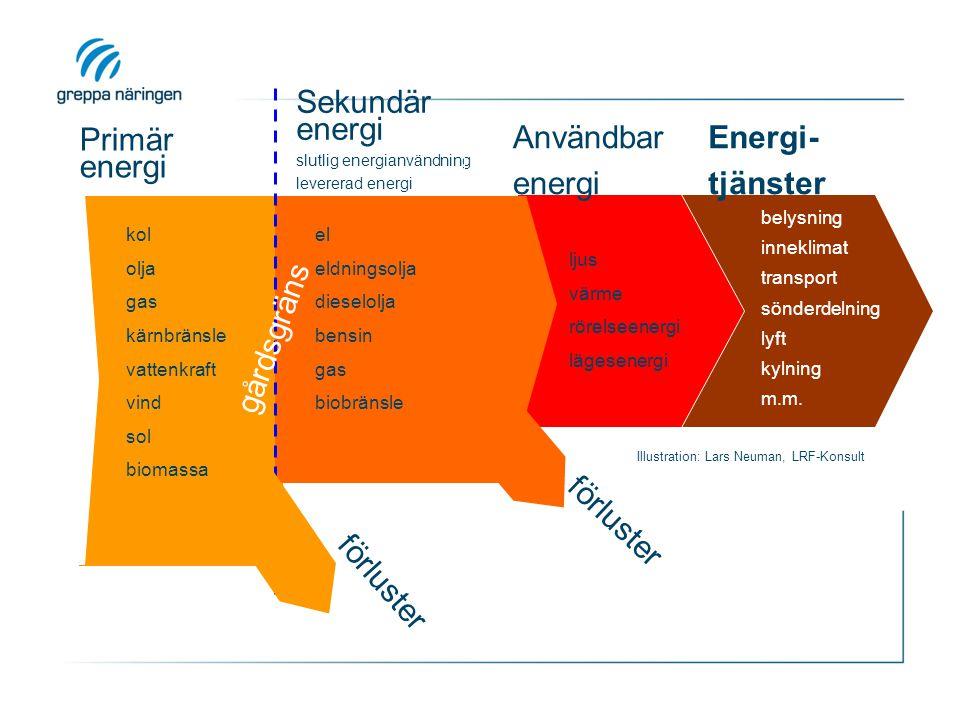 Primär energi Sekundär energi slutlig energianvändning levererad energi direkt energi kol olja gas kärnbränsle vattenkraft vind sol biomassa el eldnin