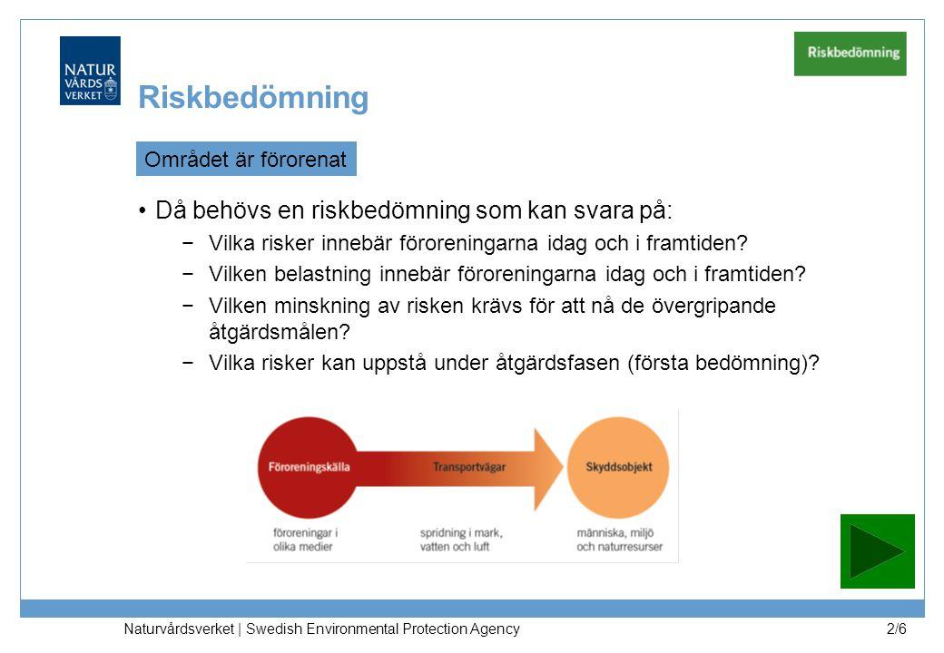 Naturvårdsverket | Swedish Environmental Protection Agency 2/6 Riskbedömning Området är förorenat Då behövs en riskbedömning som kan svara på: −Vilka risker innebär föroreningarna idag och i framtiden.
