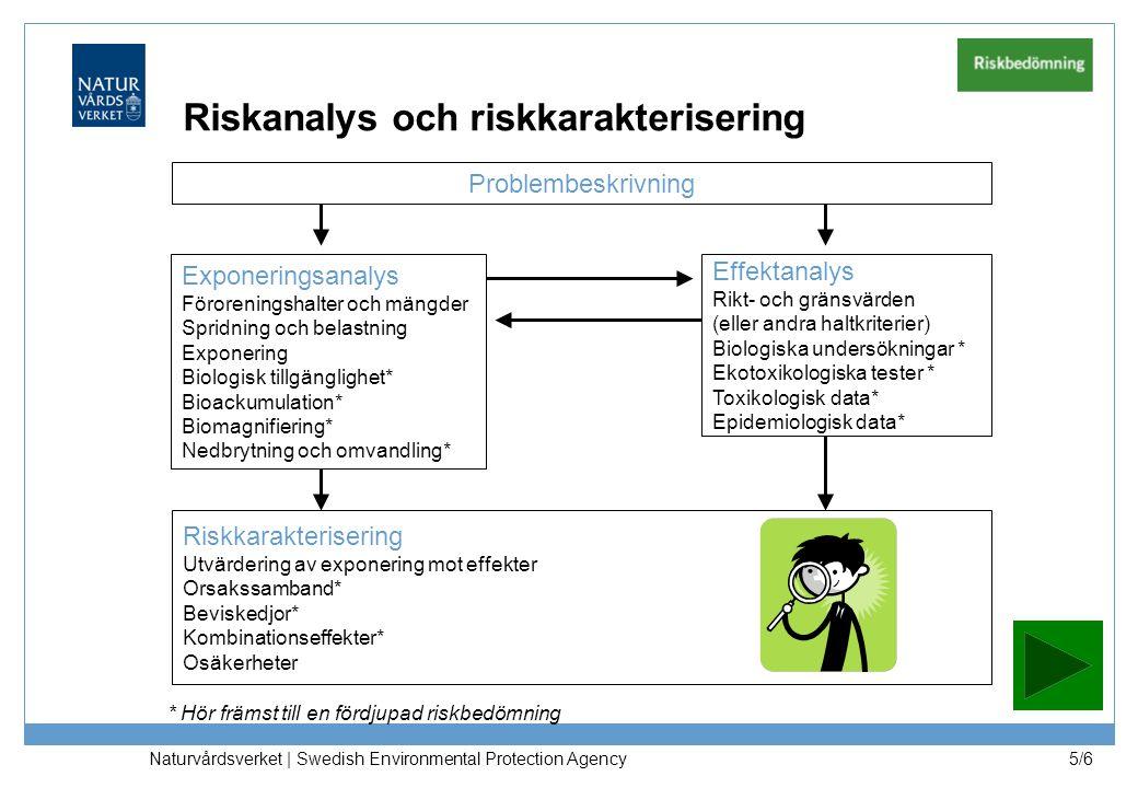 Naturvårdsverket | Swedish Environmental Protection Agency 5/6 Exponeringsanalys Föroreningshalter och mängder Spridning och belastning Exponering Bio