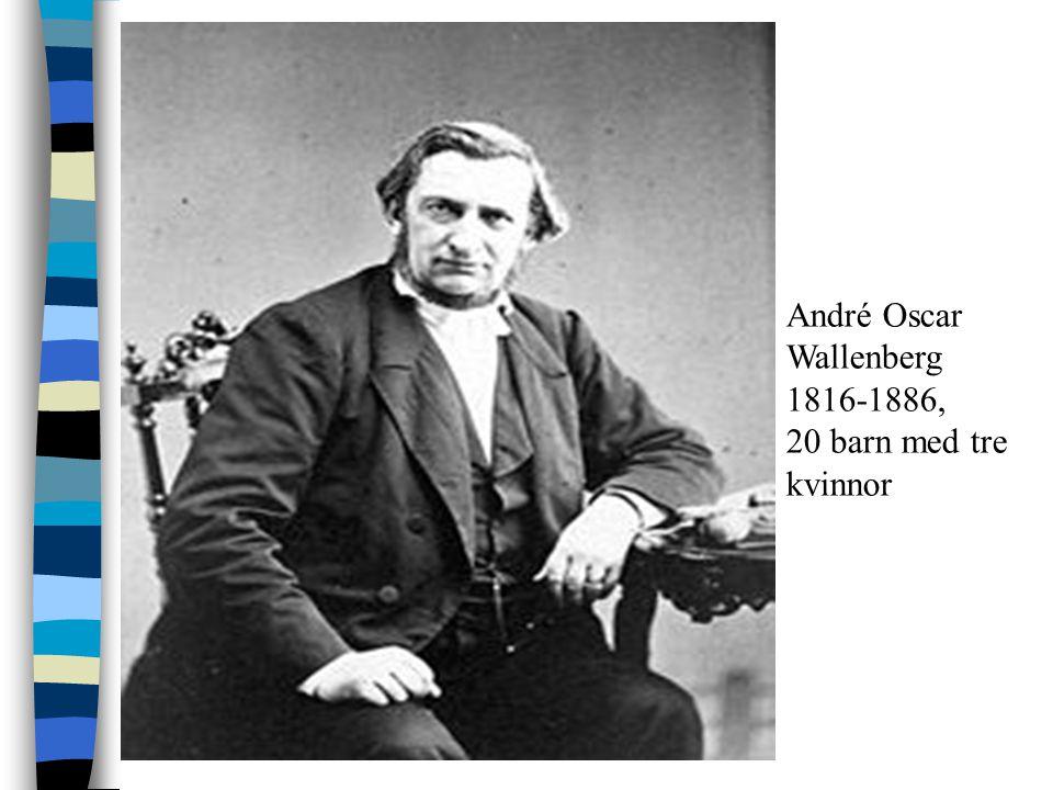 André Oscar Wallenberg 1816-1886, 20 barn med tre kvinnor
