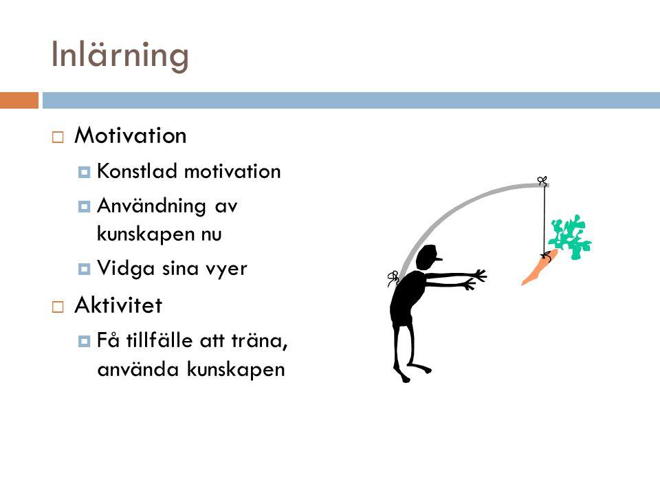 Inlärning  Motivation  Konstlad motivation  Användning av kunskapen nu  Vidga sina vyer  Aktivitet  Få tillfälle att träna, använda kunskapen