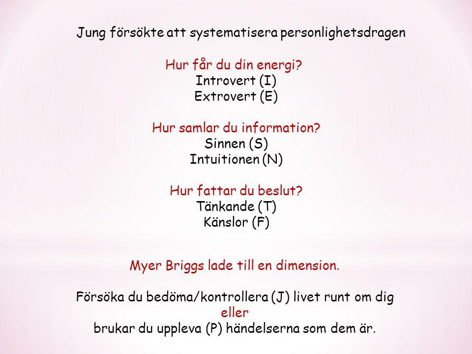 Jung försökte att systematisera personlighetsdragen Hur får du din energi.