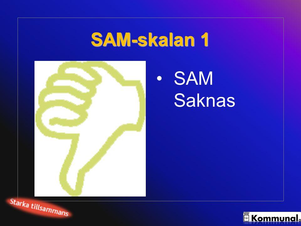 SAM-skalan 2 SAM påbörjat: Chefer och arbetsledare har särskilda kunskaper om arbetsmiljön.