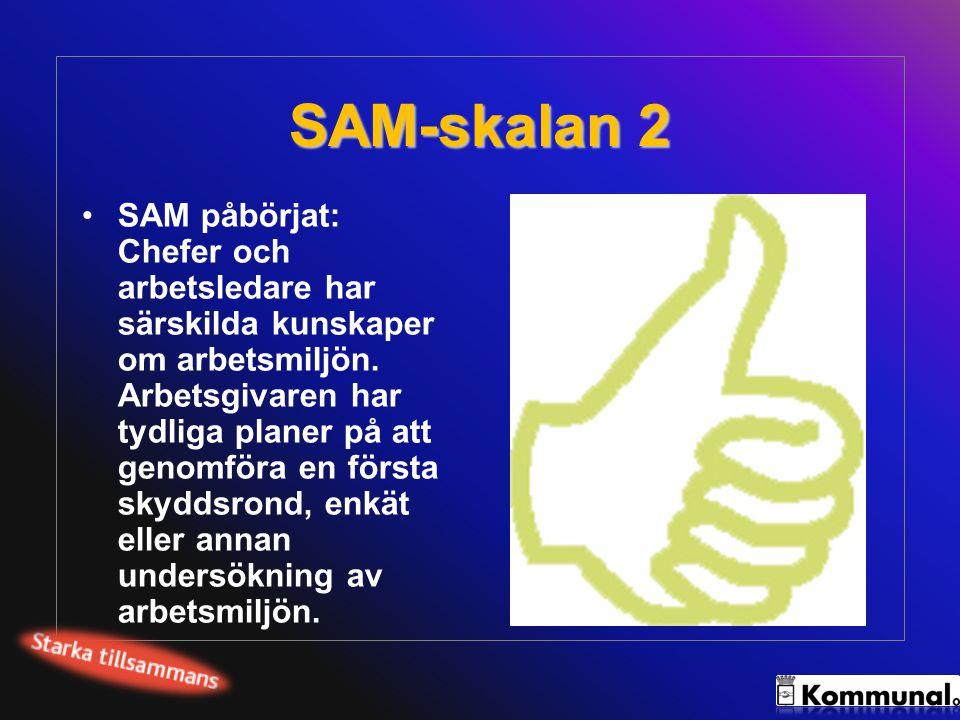 SAM-skalan 2 SAM påbörjat: Chefer och arbetsledare har särskilda kunskaper om arbetsmiljön. Arbetsgivaren har tydliga planer på att genomföra en först