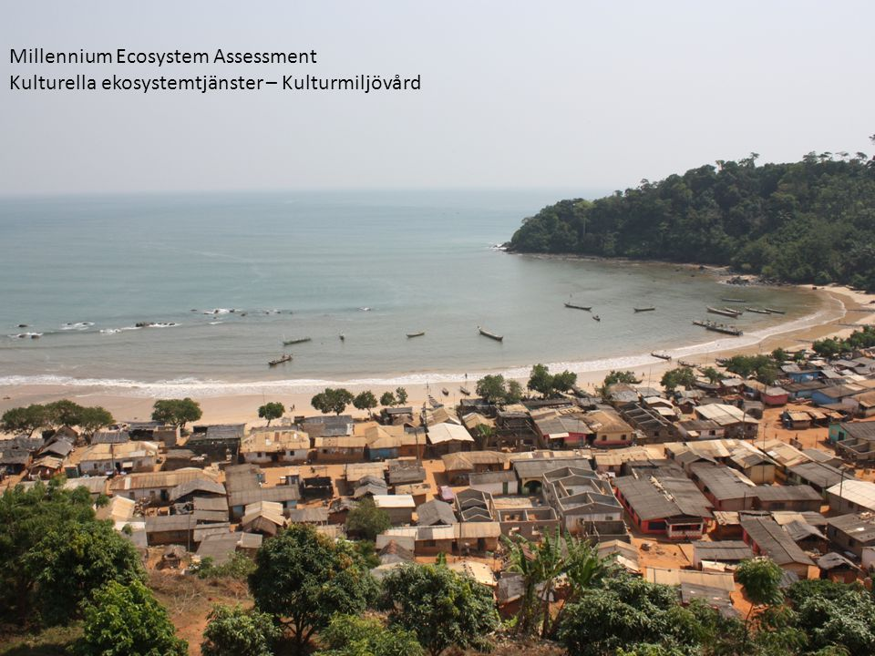 Millennium Ecosystem Assessment Kulturella ekosystemtjänster – Kulturmiljövård