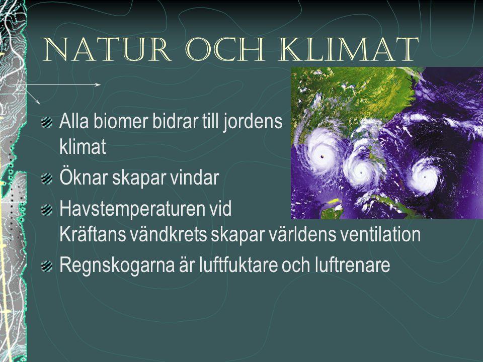 Natur och klimat Alla biomer bidrar till jordens klimat Öknar skapar vindar Havstemperaturen vid Kräftans vändkrets skapar världens ventilation Regnsk