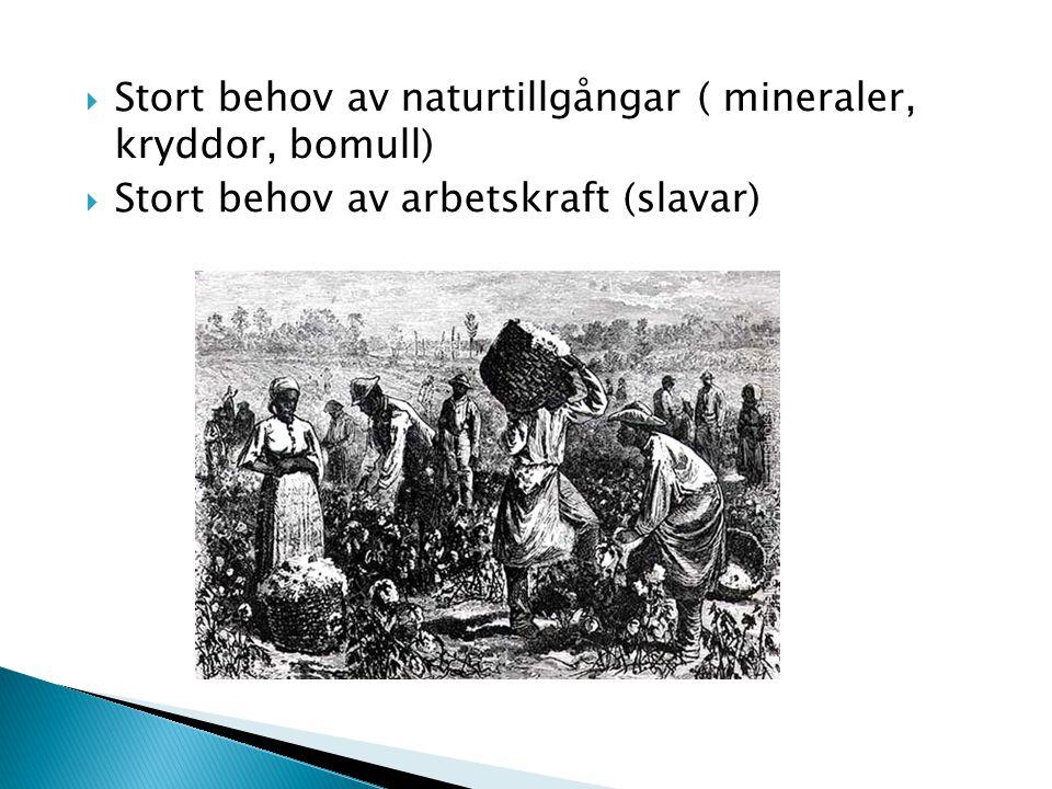  Stort behov av naturtillgångar ( mineraler, kryddor, bomull)  Stort behov av arbetskraft (slavar)