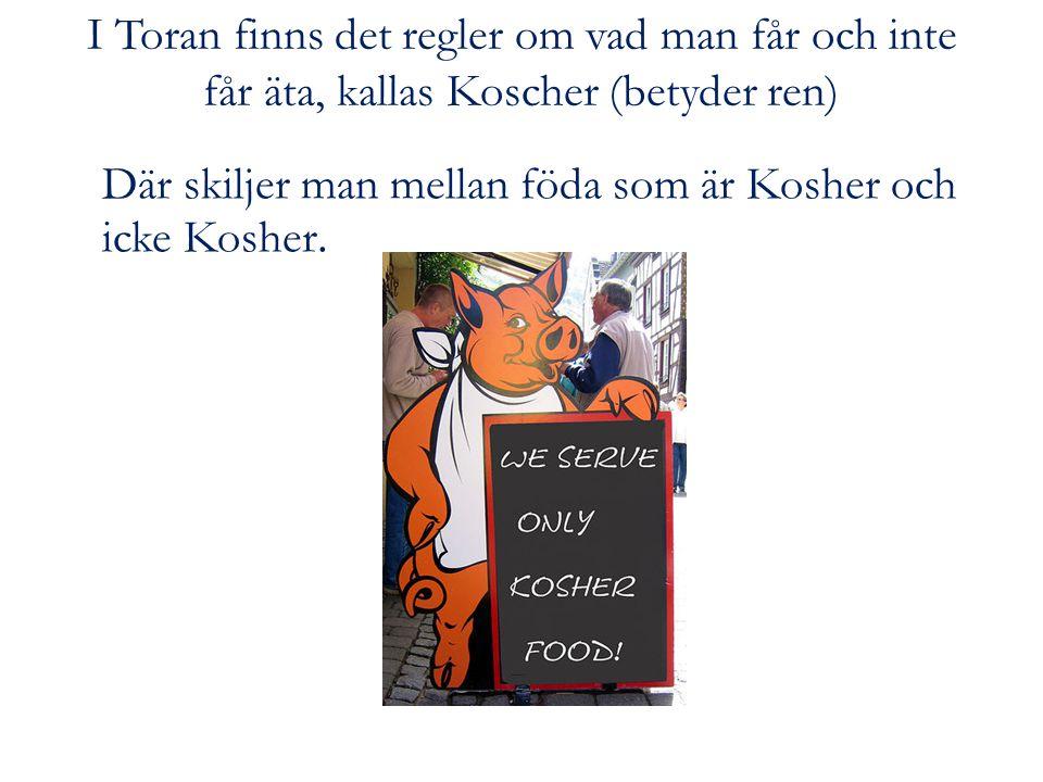 I Toran finns det regler om vad man får och inte får äta, kallas Koscher (betyder ren) Där skiljer man mellan föda som är Kosher och icke Kosher.