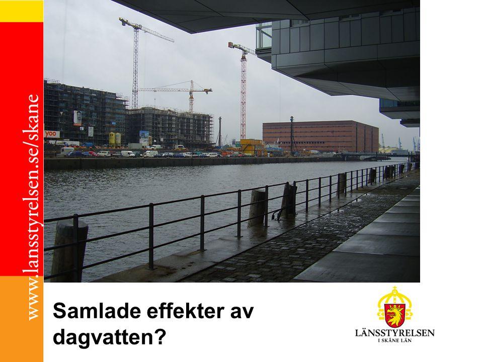 Samlade effekter av dagvatten?
