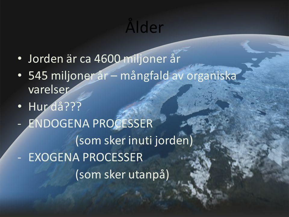 Ålder Jorden är ca 4600 miljoner år 545 miljoner år – mångfald av organiska varelser Hur då??? -ENDOGENA PROCESSER (som sker inuti jorden) -EXOGENA PR