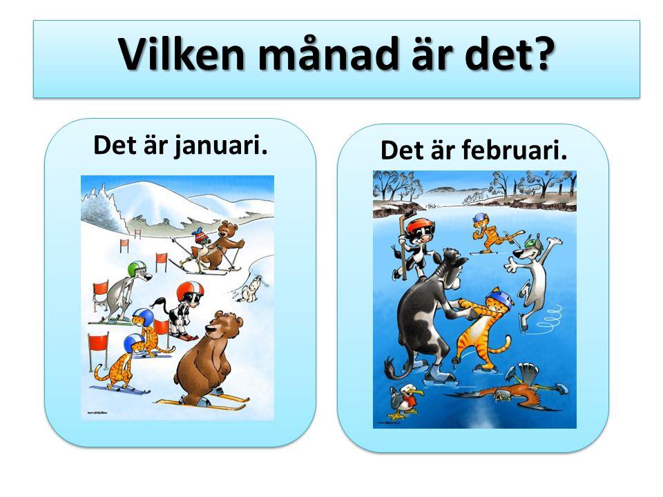 Det är januari. Vilken månad är det? Det är februari.