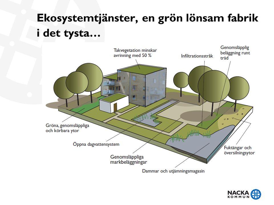 Ekosystemtjänster, en grön lönsam fabrik i det tysta…