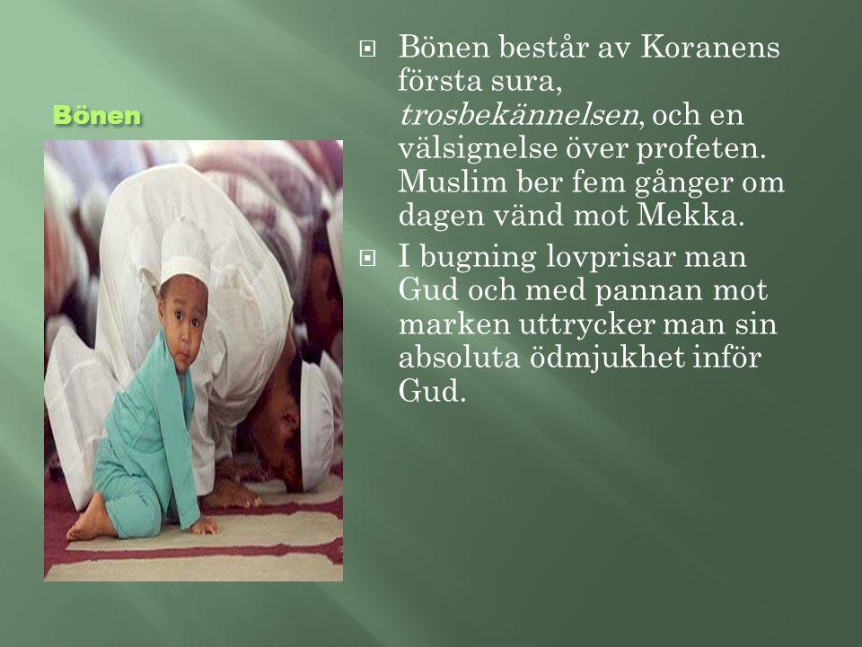 Bönen  Bönen består av Koranens första sura, trosbekännelsen, och en välsignelse över profeten. Muslim ber fem gånger om dagen vänd mot Mekka.  I bu