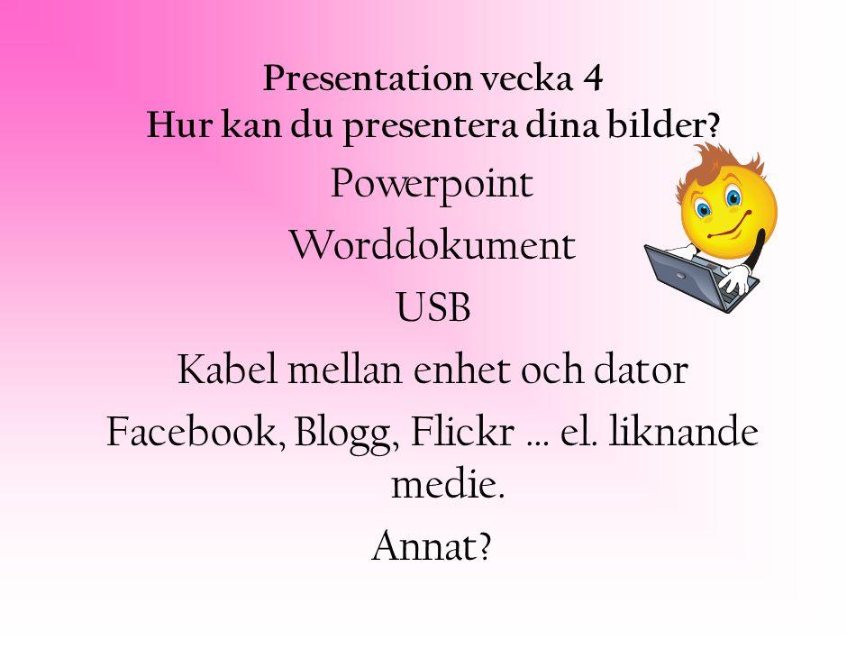Presentation vecka 4 Hur kan du presentera dina bilder.