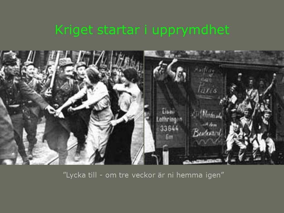 Nya länder Ett band av nya stater bildas i krigets spår Finland Estland Lettland Litauen Polen Tjeckoslovakien Ungern Jugoslavien