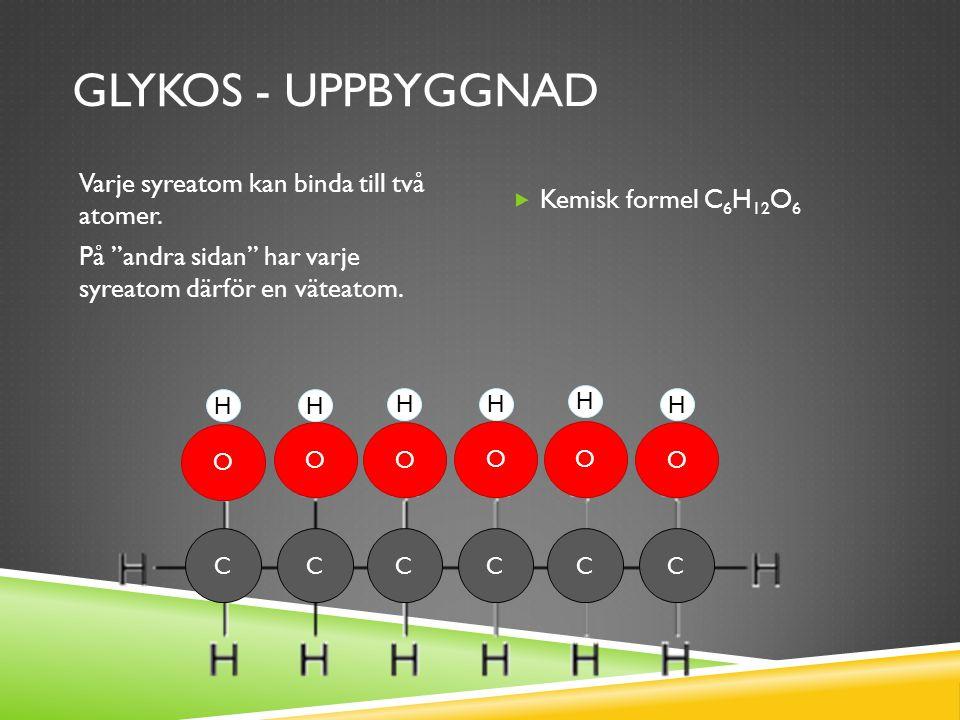 GLYKOS - UPPBYGGNAD Varje syreatom kan binda till två atomer.