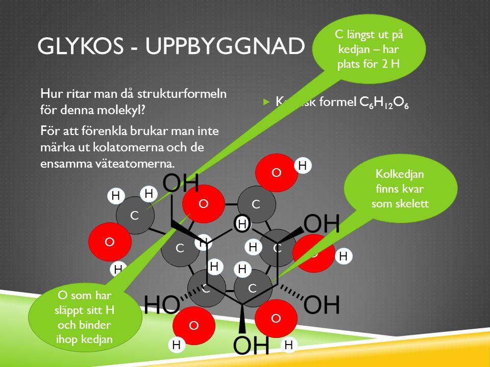 GLYKOS  Glykos = druvsocker  Det ämne som bildas i de gröna bladen vid fotosyntes  Det ämne som kroppen kan ta upp direkt som näring  Finns alltid löst i blodet (ca 0,1%)  Andra enkla sockerarter:  Fruktos (fruktsocker)  Galaktos