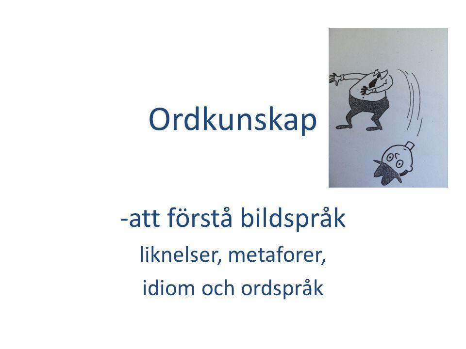Ordkunskap -att förstå bildspråk liknelser, metaforer, idiom och ordspråk