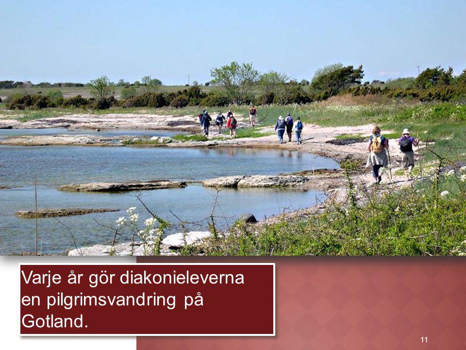 11 Varje år gör diakonieleverna en pilgrimsvandring på Gotland. 11