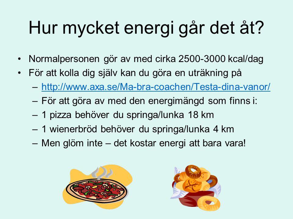 Hur mycket energi går det åt? Normalpersonen gör av med cirka 2500-3000 kcal/dag För att kolla dig själv kan du göra en uträkning på –http://www.axa.s