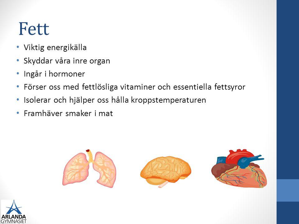 Fett Viktig energikälla Skyddar våra inre organ Ingår i hormoner Förser oss med fettlösliga vitaminer och essentiella fettsyror Isolerar och hjälper o