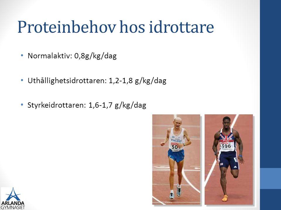 Proteinbehov hos idrottare Normalaktiv: 0,8g/kg/dag Uthållighetsidrottaren: 1,2-1,8 g/kg/dag Styrkeidrottaren: 1,6-1,7 g/kg/dag