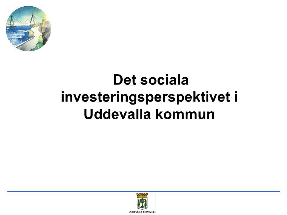 Det sociala investeringsperspektivet i Uddevalla kommun