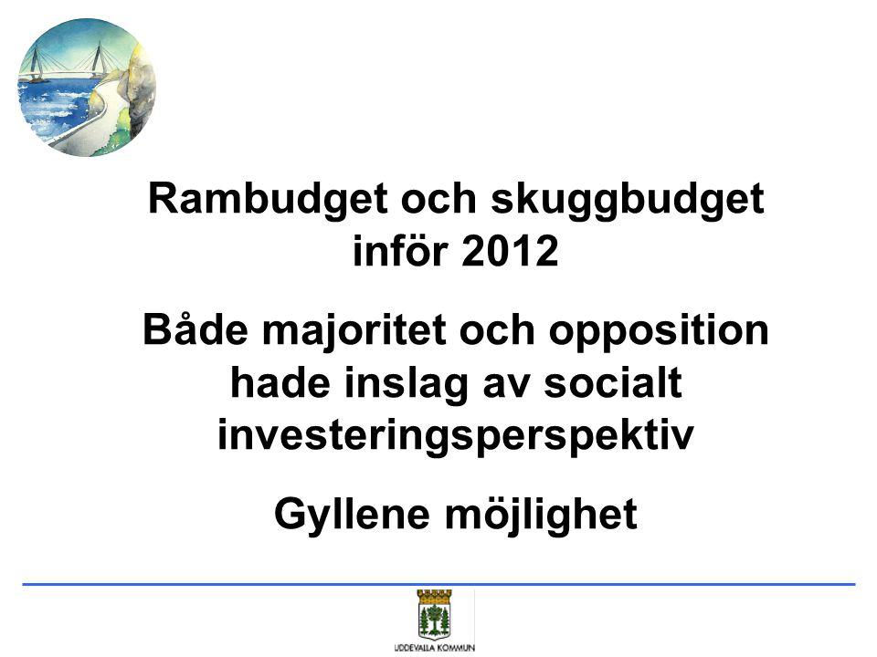 Tvärpolitisk arbetsgrupp för genomförandet av ett socialt investeringsperspektiv i Uddevalla kommun