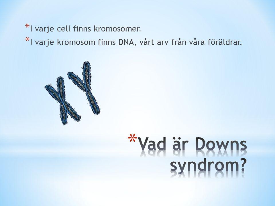 * I varje cell finns kromosomer. * I varje kromosom finns DNA, vårt arv från våra föräldrar.