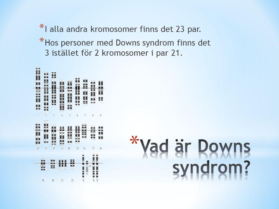 * I alla andra kromosomer finns det 23 par.