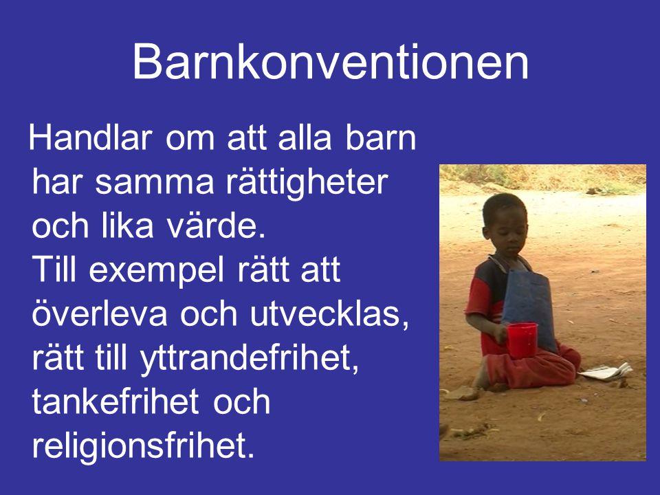 Barnkonventionen Handlar om att alla barn har samma rättigheter och lika värde. Till exempel rätt att överleva och utvecklas, rätt till yttrandefrihet