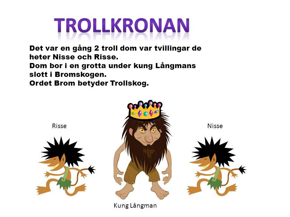 Det var en gång 2 troll dom var tvillingar de heter Nisse och Risse. Dom bor i en grotta under kung Långmans slott i Bromskogen. Ordet Brom betyder Tr