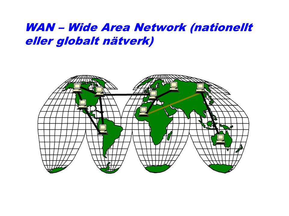 WAN – Wide Area Network (nationellt eller globalt nätverk)