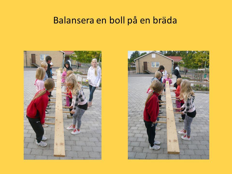 Balansera en boll på en bräda
