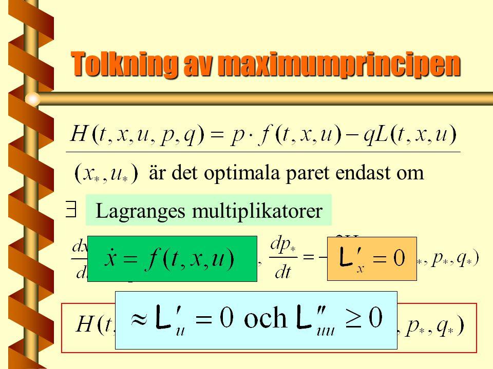 är det optimala paret endast om Tolkning av maximumprincipen Lagranges multiplikatorer