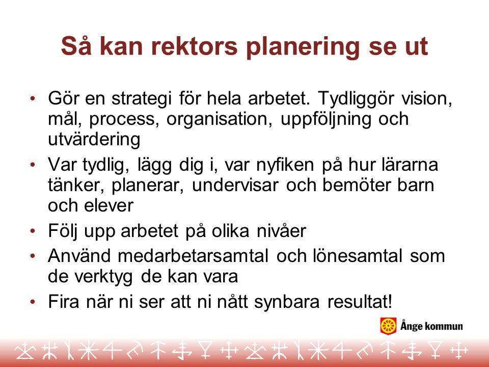 Så kan rektors planering se ut Gör en strategi för hela arbetet. Tydliggör vision, mål, process, organisation, uppföljning och utvärdering Var tydlig,