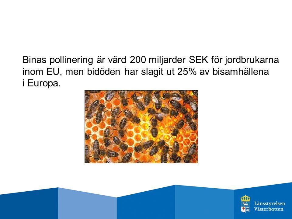 Binas pollinering är värd 200 miljarder SEK för jordbrukarna inom EU, men bidöden har slagit ut 25% av bisamhällena i Europa.